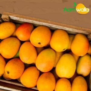 mango home delivery near me, alphonso mango, alphonso mango online,