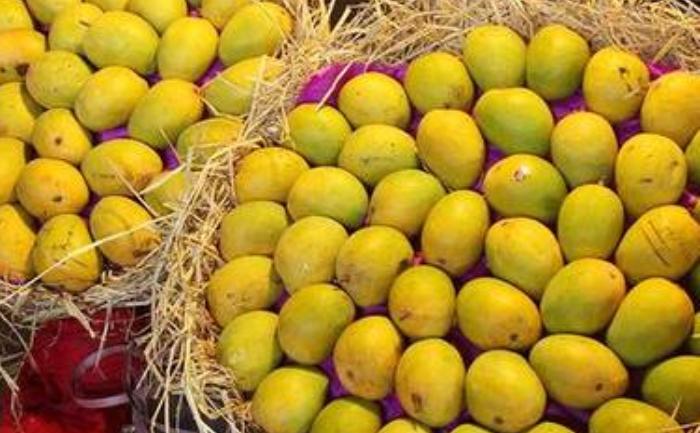 How To Identify Alphonso Mangoes Mango