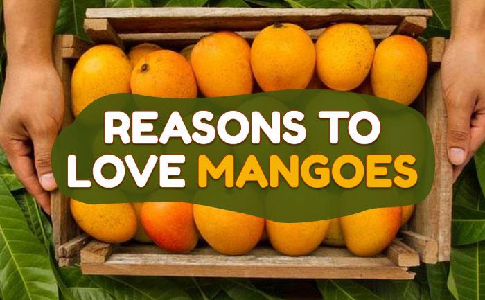 buy alphonso mango online, buy mangoes online,