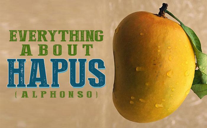 buy hapoos mangoes, hapus mangoes, alphonso mangoes,
