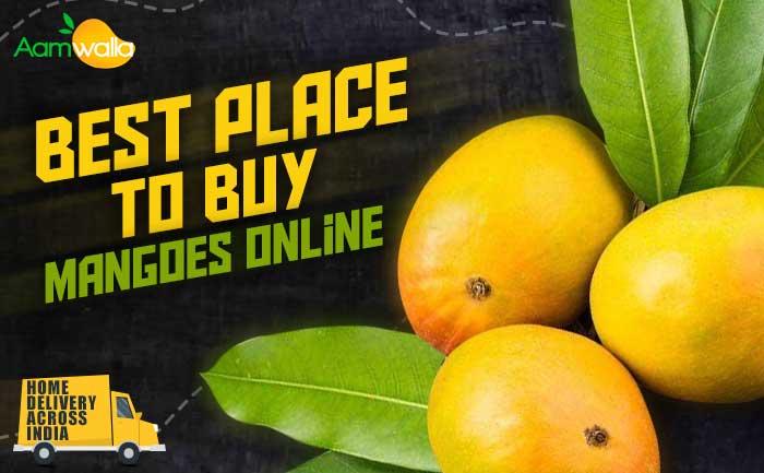 buy mangoes online, order mangoes online, mangoes, alphonso mangoes,