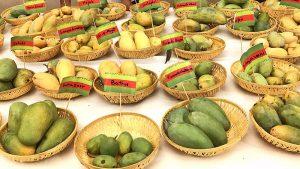 indian alphonso mangoes, varieties of indian mangoes,