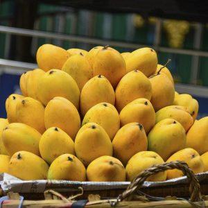 indian mangoes, organic alphonso mangoes,