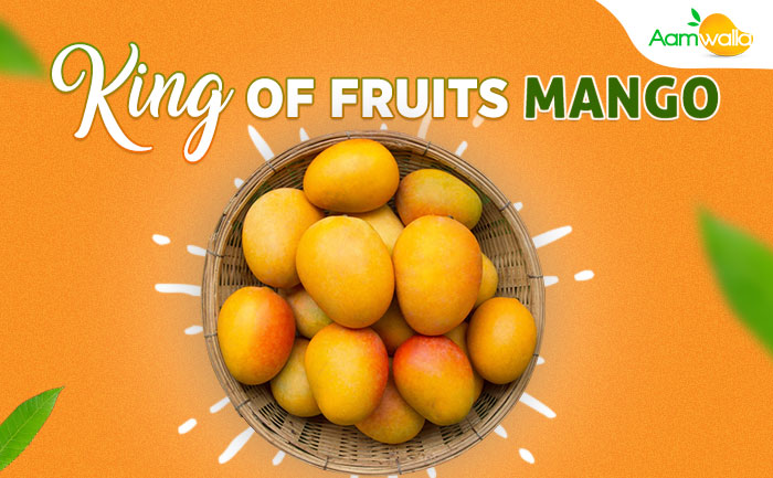 king of fruits mangoes,