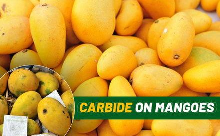 aamwalla, buy mangoes online, order mangoes online, buy alphonso mangoes online