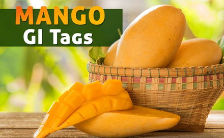 Mango GI Tags, buy mangoes online, order mangoes online,