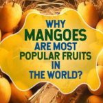 Why Mangoes Are Most Popular Fruits In The World?